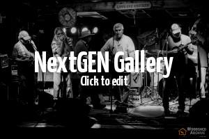 Nervous Ticks at Musefest 2016 [nertic2016-03-26]
